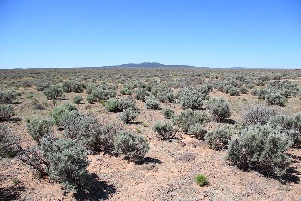 Aavikkoerämaata Roswellin kaupungin lähistöllä New Mexicossa Yhdysvalloissa.